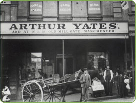 history-of-yates